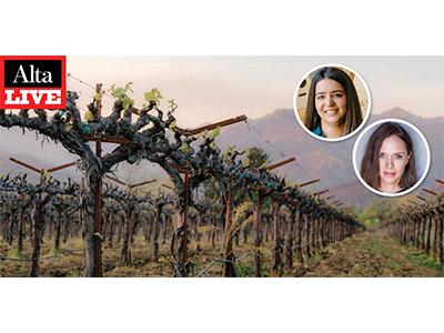 Alta Live Napa Wine banner