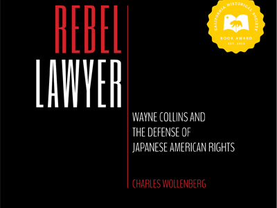 Rebel Lawyer cover image- cropped