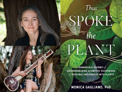 Monica Gagliano and Bettina Maureenji profile photos and Thus Spoke the Plant cover image