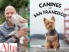 Mark Rogers author photo and Canines of SF cover image